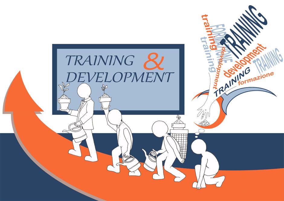 servizi-formazione-e-sviluppo